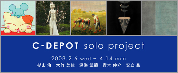 C-DEPOT solo project